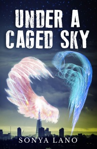 caged_sky_front